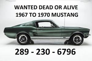 Ford Mustang repair Montreal ford repair montreal